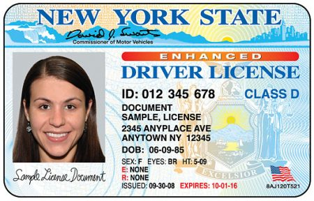NY State Driver License